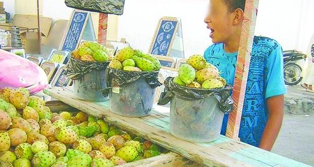 Commerce des figues de barbarie