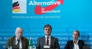 Allemagne - En un an, l'extrême droite a bouleversé la vie politique