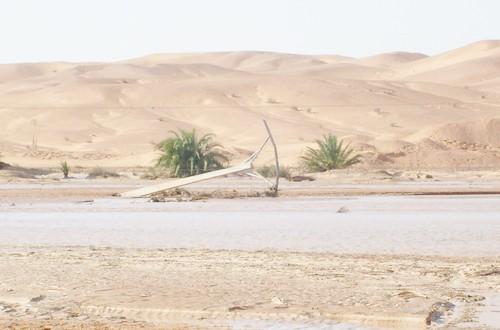 Oued M'zab