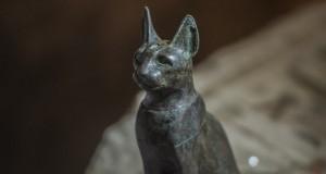 Avec chats et scarabées momifiés - L'Egypte dévoile sept tombes du temps des pharaons