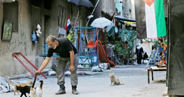 Les Palestiniens de Yarmouk gardent l'espoir d'une reconstruction