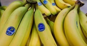 bananep4