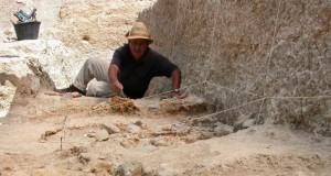 site archéologie de Aïn Boucherit