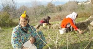 Femmes rurale