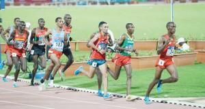 Championnats d'Afrique d'Athlétisme