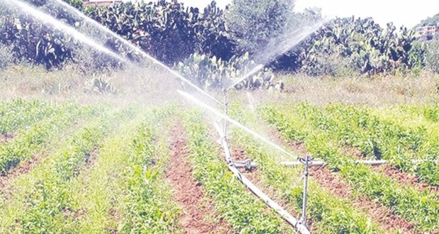 irrigation d'appoint
