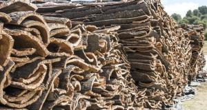 Pile of bark from cork