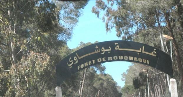 Bouchaoui