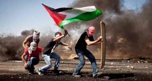 palestinep5