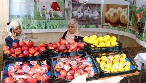 Fête nationale de la pomme à Bouhmama