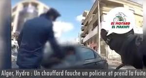 POLICIER HYDRA