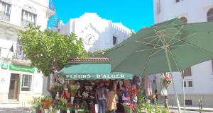 kiosque Fleurs d'Alger