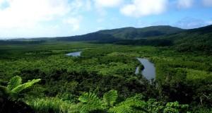 Complexe des forêts de Kaeng Krachan